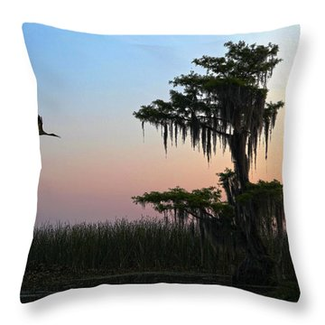St Augustine Morning Throw Pillow