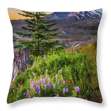 St Helens Caldera Throw Pillow by Inge Johnsson