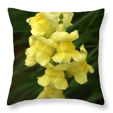 St. Johns Flower 866 Throw Pillow