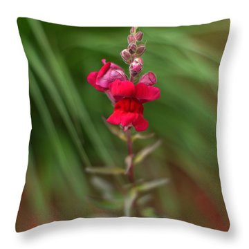 St. Johns Park Flower 872 Throw Pillow