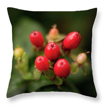 St. John's Wort 2 Throw Pillow