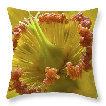 St Johns Wort Flower Centre Throw Pillow