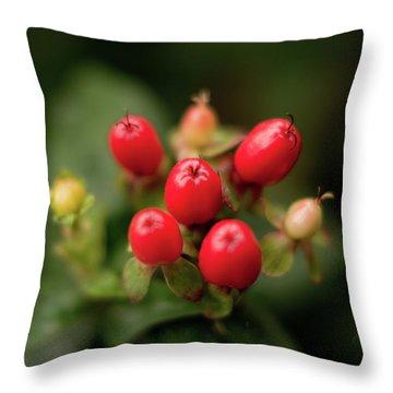 St. John's Wort Throw Pillow