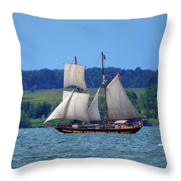 St. Lawrence II  Throw Pillow