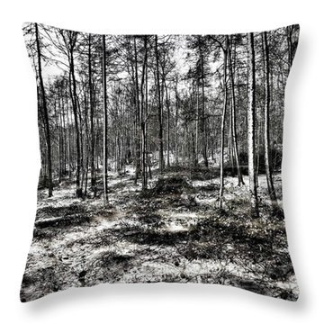 St Lawrence's Wood, Hartshill Hayes Throw Pillow by John Edwards