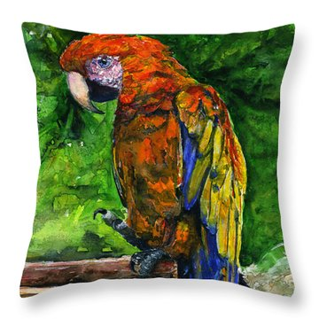 St. Maarten Shirt Throw Pillow