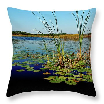 St. Mark's Lake Throw Pillow