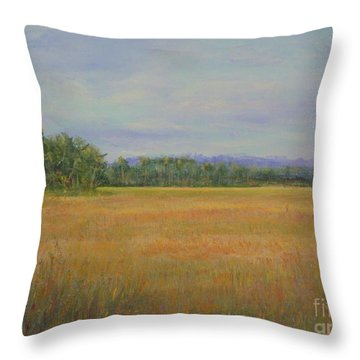 St. Marks Refuge I - Autumn Throw Pillow by Gail Kent