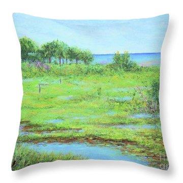 St. Marks Refuge I - Summer Throw Pillow