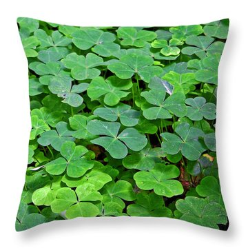 St Patricks Day Shamrocks - First Green Of Spring Throw Pillow by Christine Till