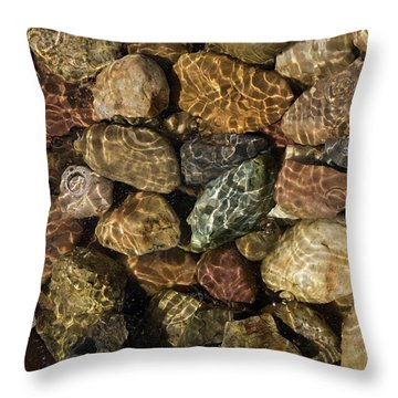 Pete's River Rocks Throw Pillow