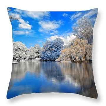 St Stephens Split Tone Park Throw Pillow