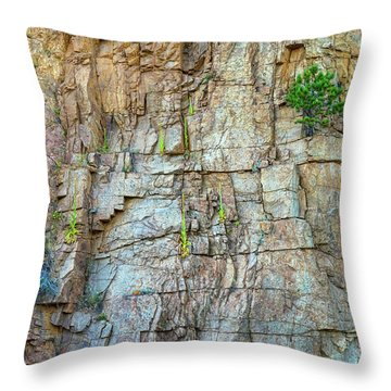 Throw Pillow featuring the photograph St Vrain Canyon Wall by James BO Insogna
