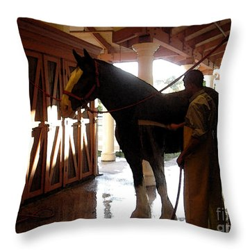 Stable Groom - 1 Throw Pillow