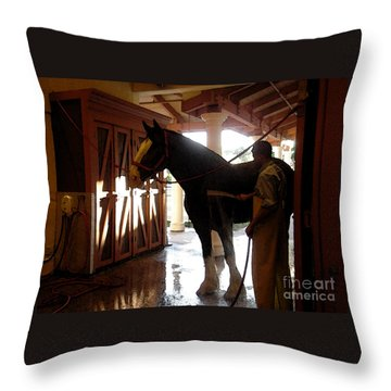 Stable Groom - 1 Throw Pillow by Linda Shafer