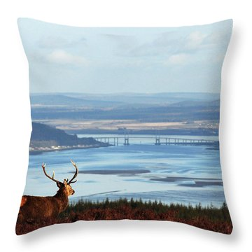 Stag Overlooking The Beauly Firth And Inverness Throw Pillow