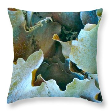 Staghorn Forest Throw Pillow by Gwyn Newcombe