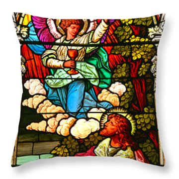 Throw Pillow featuring the photograph Stained Glas Scene 7 by Adam Jewell