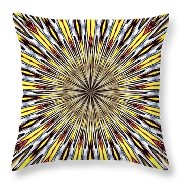 Throw Pillow featuring the photograph Stained Glass Kaleidoscope 22 by Rose Santuci-Sofranko