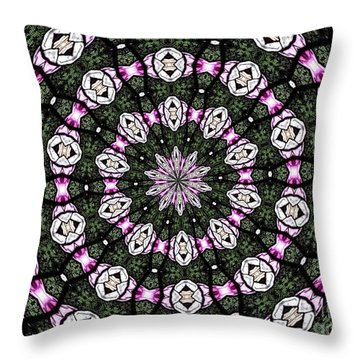 Throw Pillow featuring the photograph Stained Glass Kaleidoscope 3 by Rose Santuci-Sofranko
