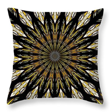 Throw Pillow featuring the photograph Stained Glass Kaleidoscope 5 by Rose Santuci-Sofranko