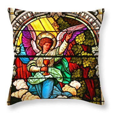 Throw Pillow featuring the photograph Stained Glass Scene 7 Crop by Adam Jewell