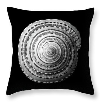 Staircase Or Sundial Shell  In Black And White Throw Pillow by Jim Hughes
