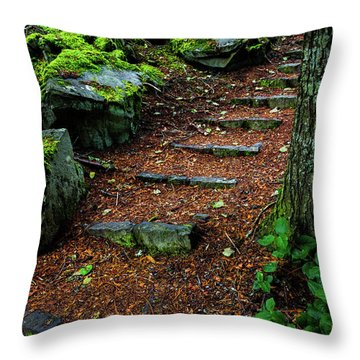 Stairway To..... Throw Pillow