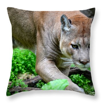Stalking Throw Pillow
