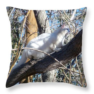 Stalking Ghost Throw Pillow