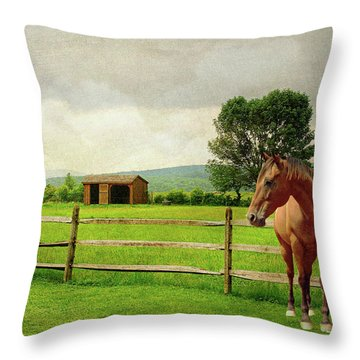 Throw Pillow featuring the photograph Stallion At Fence by Diana Angstadt