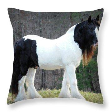 Stallion Perfection Throw Pillow