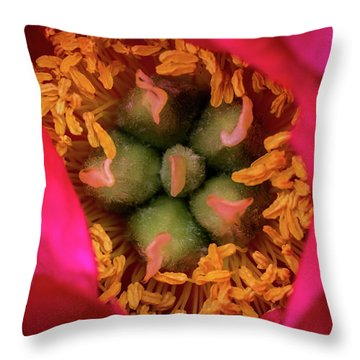 Stamen And Pistils Throw Pillow by Jay Stockhaus