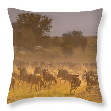 Stampede-serengeti Plain Throw Pillow
