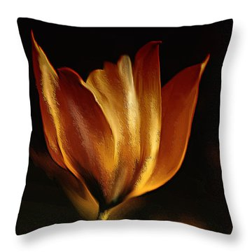 Stand Alone Throw Pillow by Elaine Manley