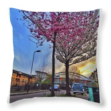 •stand Back And Take It Throw Pillow