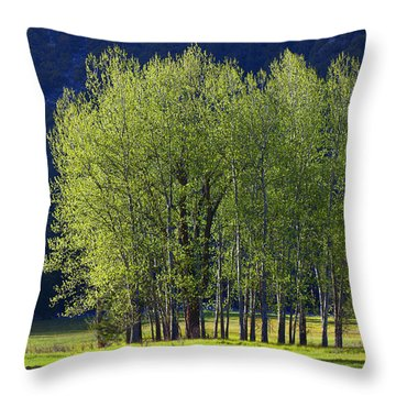 Stand Of Trees Yosemite Valley Throw Pillow by Garry Gay
