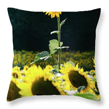 Throw Pillow featuring the photograph Stand Out 2 by Andrea Anderegg