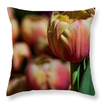 Throw Pillow featuring the photograph Stand Out by Tammy Espino
