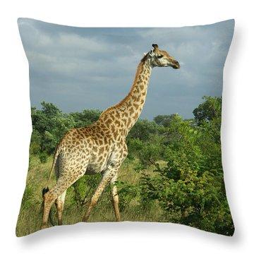 Standing Alone - Giraffe Throw Pillow