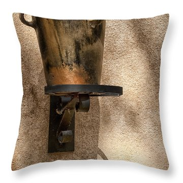 Standing Alone Throw Pillow by Sandra Bronstein