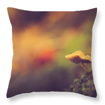Standing At The Edge Throw Pillow by Shane Holsclaw