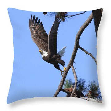 Throw Pillow featuring the photograph Standing Eagle by Geraldine DeBoer