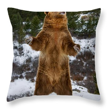 Standing Grizzly Bear Throw Pillow