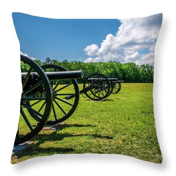 Standing Guard Throw Pillow