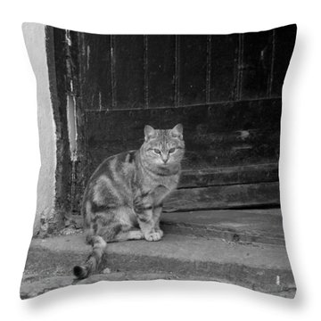 Standing Guard Throw Pillow by Mike McGlothlen