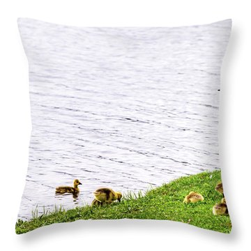 Throw Pillow featuring the photograph Standing Guard by Onyonet  Photo Studios