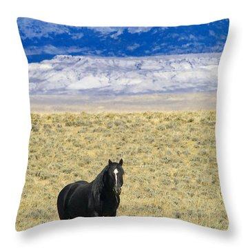 Standing Horse Throw Pillow