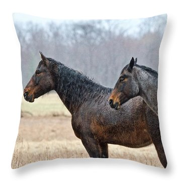 Standing In The Rain 1281 Throw Pillow by Michael Peychich