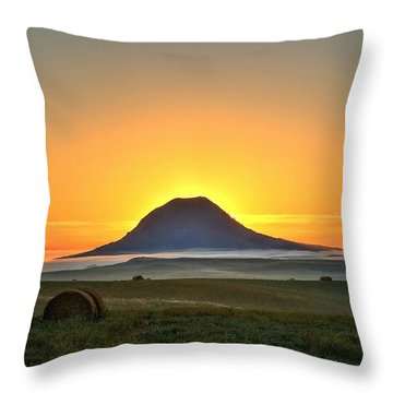 Standing In The Shadow Throw Pillow